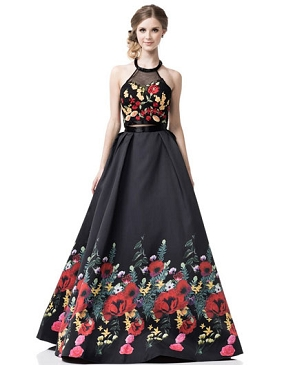 2 Piece Floral Print Ball Gown Set