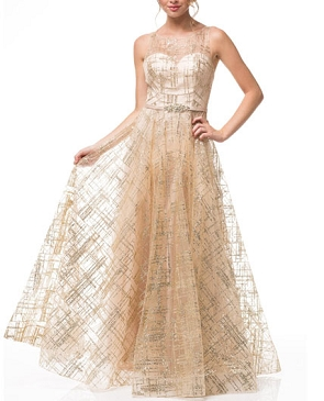 Champagne Tulle Ball Gown w/Gold Glitter Designs