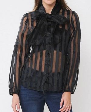 Long Sleeve Sheer Stripes Blouse- 2 Colors